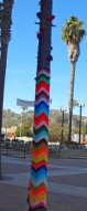 Purple Pole