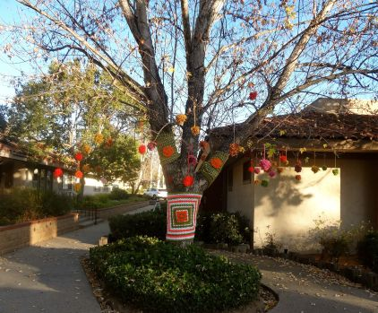 evolve-yarnbombing-tree